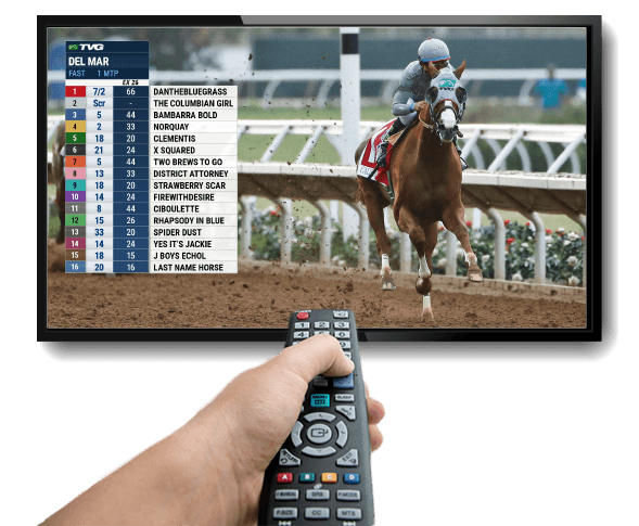 Tvg horse betting log in. canadian retailers accepting bitcoins